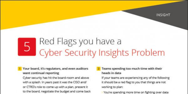 Insight: 5 Red Flags you have a Cyber Security Insights Problem